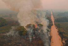 """Fumaças vindas do Pantanal pode causar """"chuva negra na grande São Paulo"""
